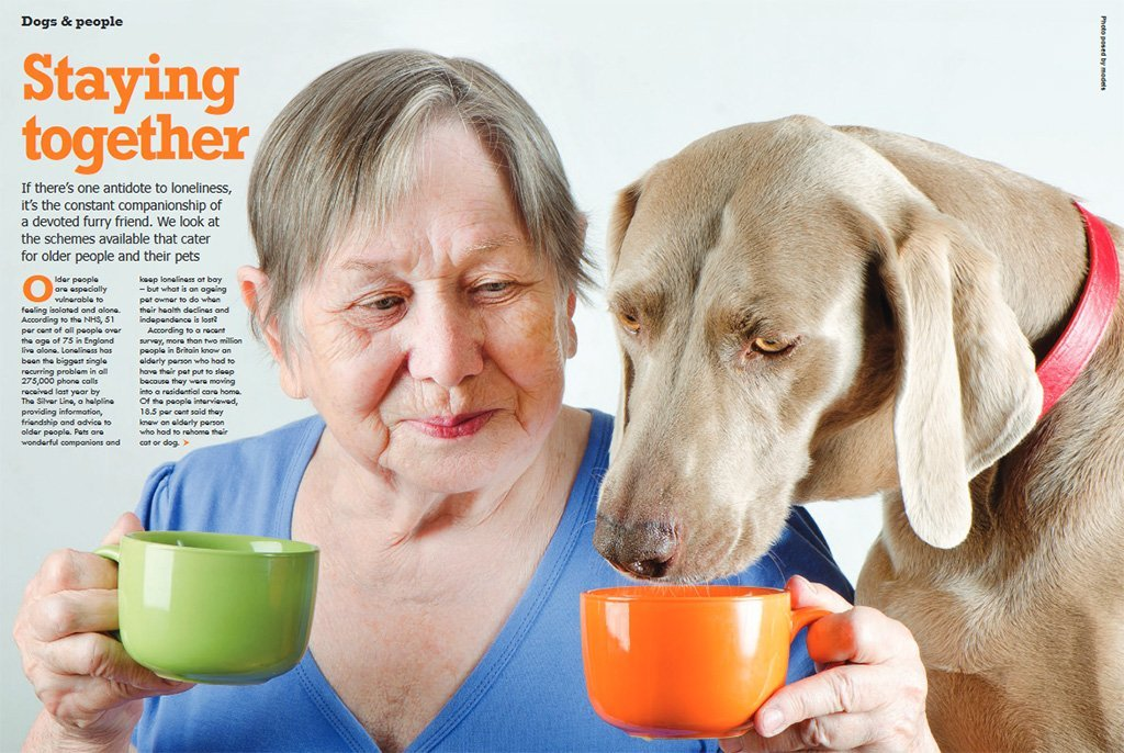 In the Press: Dogs Monthly Magazine, June 2015