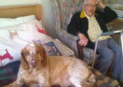 William the Care Home Dog
