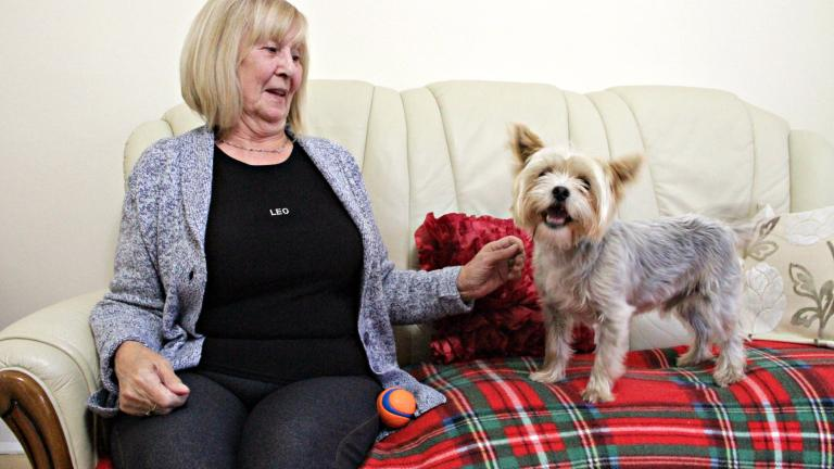 Puppy love: Rescue dogs matched with pensioners to ease loneliness