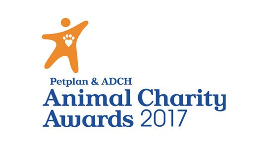 Finalist in Pet Plan's 'Animal Charity Volunteer of the Year' 2017