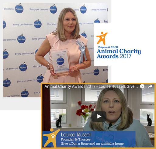 Louise Russell - Petplan & ADCH Animal Charity Awards 2017