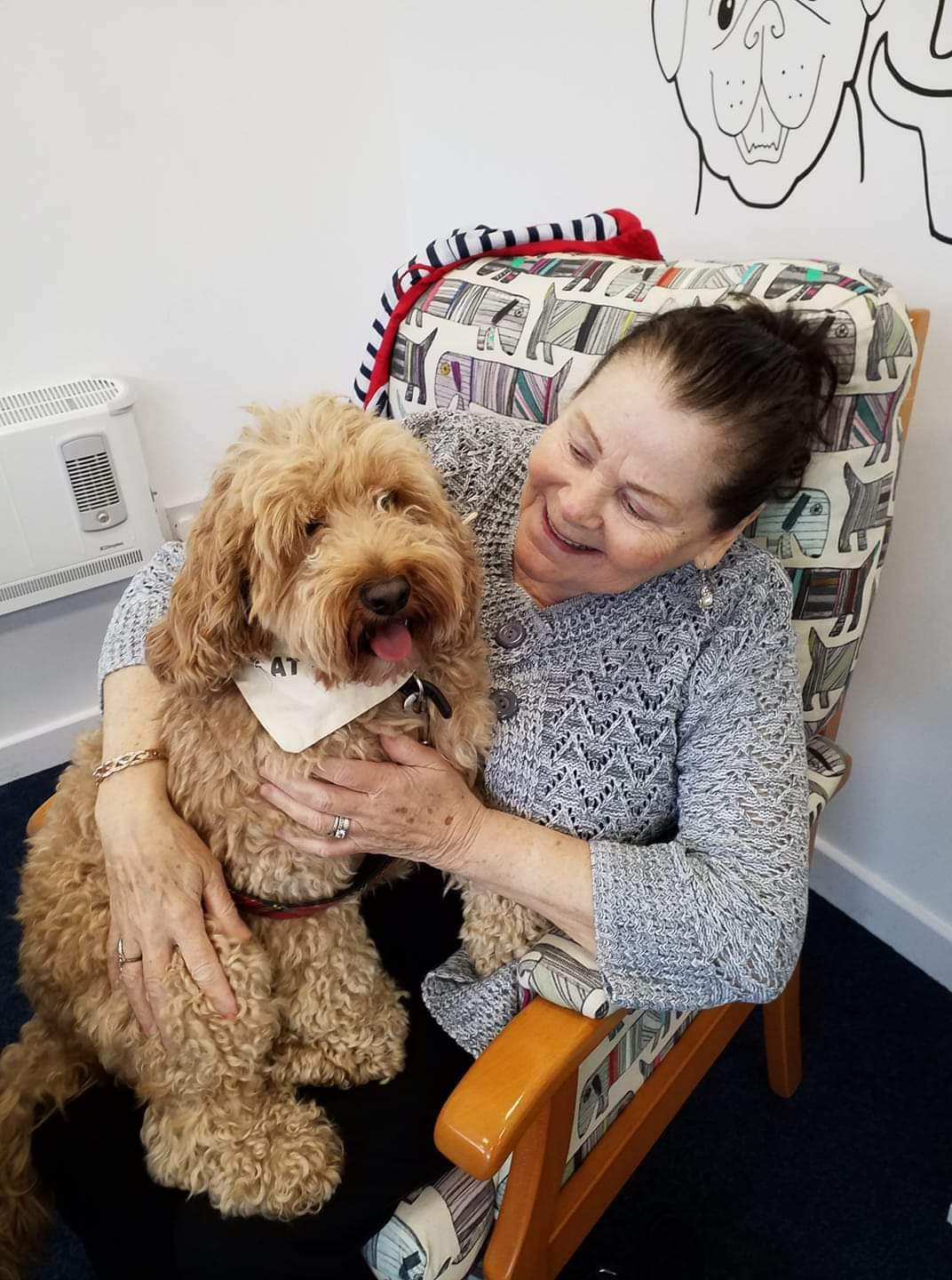 Give a Dog a Bone and an animal a home | Service User